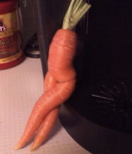 this carrot was turning me on. i had to eat it.
